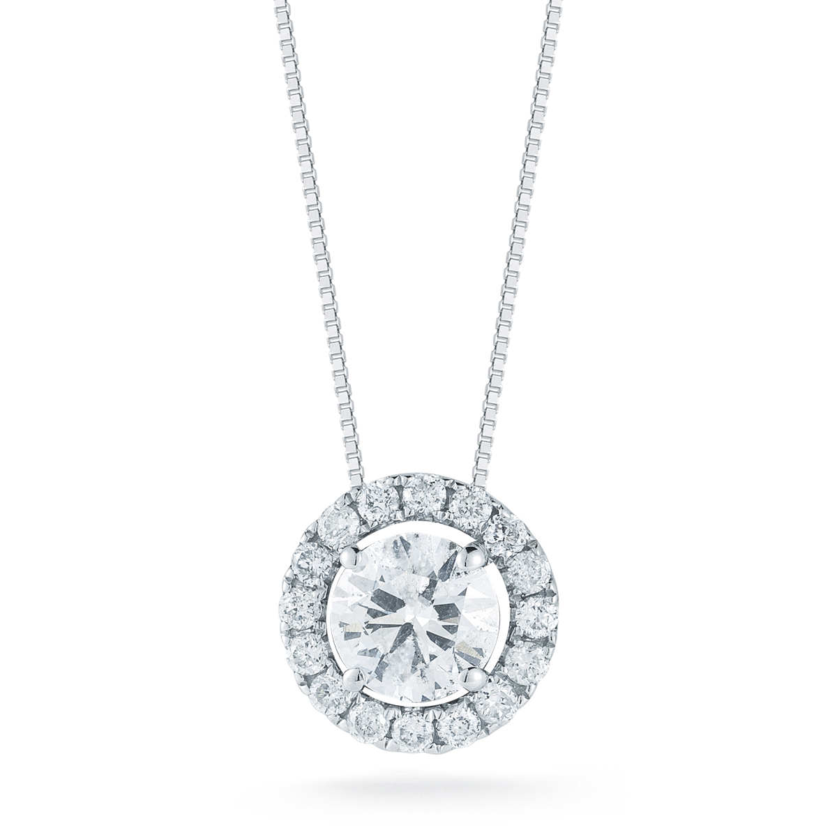 Paramount Gems 14 Karat White Gold Round Halo Diamond Pendant Necklace